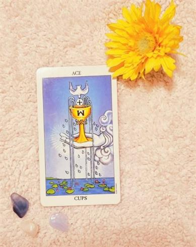Ace of Cups The Gift Of Love