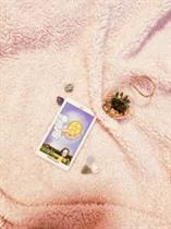 Ace of Pentacles – The Seed Of Potential