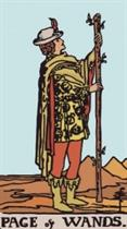 Page of Wands. Rider Waite Tarot.